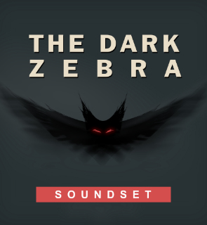 The Dark Zebra