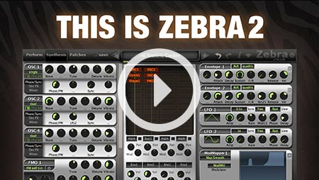 This is Zebra2